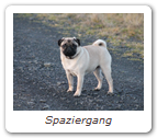 Spaziergang